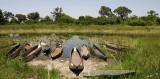 12304 - Kano parking / Okavango Delta - Botswana