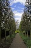 15129 - The trail... / Kew Gardens - Richmond - England
