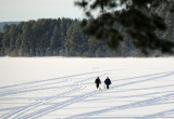 a walk on the lake.jpg