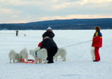 activity on the lake.jpg
