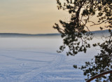 evening mist3.jpg