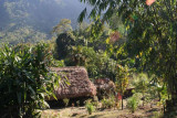 near Kheti