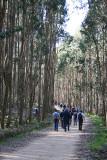Trilho da Fonte D. Maria - Cercal - Montejunto (11/03/2007)