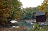 Paddy's Creek