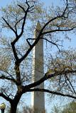 Washington Monument 01