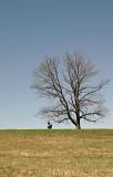 Gettysberg Cemetary-Hill