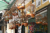 La boutique de l'oiseleur - Hanoi
