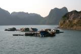 Village sur l'eau