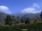Selekta, Malang