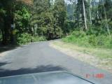 jalan raya Ciwidey