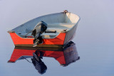 Cape Cod 2007