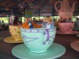 TeacupsD.jpg