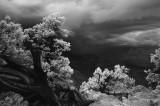 Gathering Storm (IR)