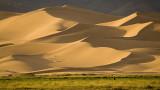 The Gobi Almost Desert