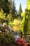 Rhododenron Gardens