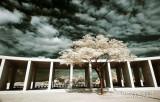 Dec06 - American War Memorial 29495
