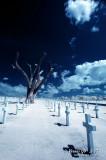2007-01-13 American War Memorial 31129 v3.jpg