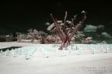 2007-01-13 American War Memorial 31141.jpg