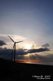 Bangui windmills 02034.jpg