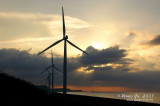 Bangui windmills 37811.jpg