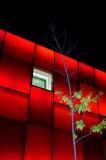 red in Milan
