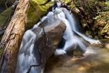 cascade on Coldspring Branch