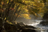 Autumn in the Southern Appalachians