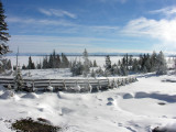 Yellowstone Winter 2007