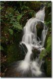 Wales179.jpg