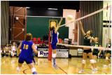 Wilson Volleyball