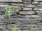 Slate Wall, Ambleside
