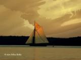 The Sloop Clearwater.jpg