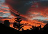 Mitchell Pk Sunset.jpg