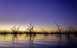 Pamamaroo Lake Sunrise.jpg
