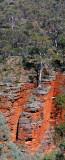 Alligator Gorge Flinders Ranges South Australia_2.jpg