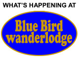 WHAT'S HAPPENING AT BLUEBIRD WANDERLODGE