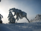 tower mountain snow run