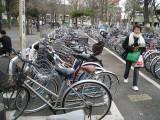 Bikes Parking