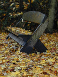 bench among the leaves...
