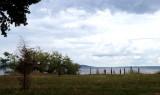 Seneca Lake view thru trees.....