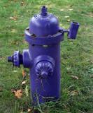 purple fire hydrant...