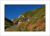 autunno_004
