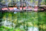 The Fairies' Pond 28