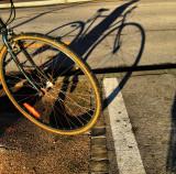 Bicycles adore winter sun...