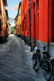 The street where bicycles live.