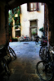 Members of the secret bicycles society gather in a hidden courtyard...