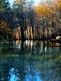 The Fairies' Pond 3