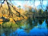 The Fairies' Pond 6