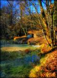The Fairies' Pond 2