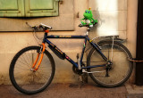 The bicycle which had a personal body-guard...